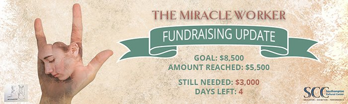 Miracle Worker Campaign Banner