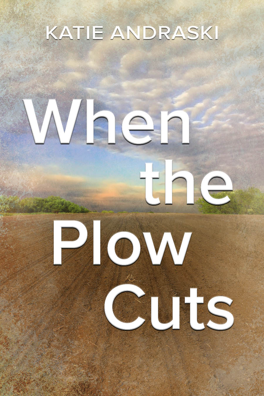 When the Plow Cuts by Katie Andraski Book Cover